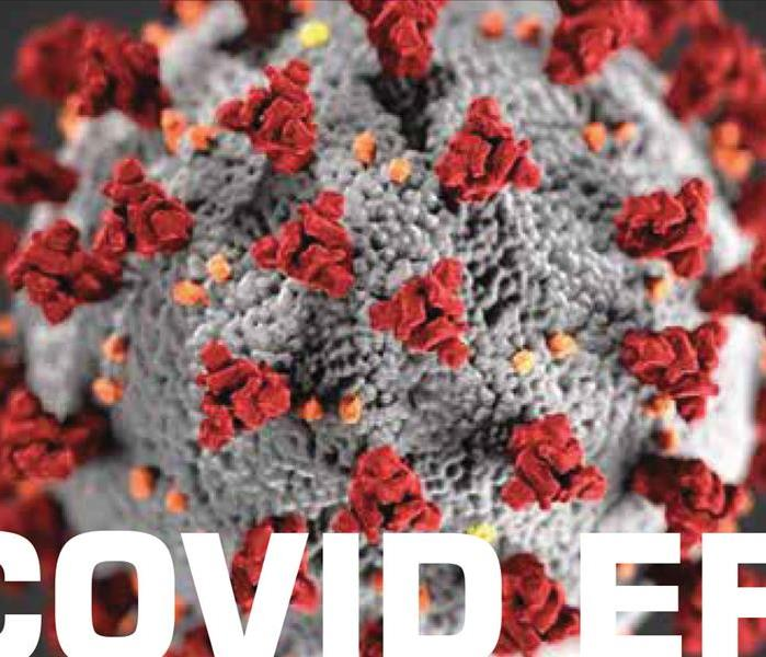 Close up photo of Covid-19 virus