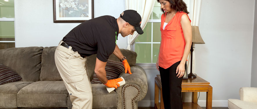 Shrewsbury, MA carpet upholstery cleaning